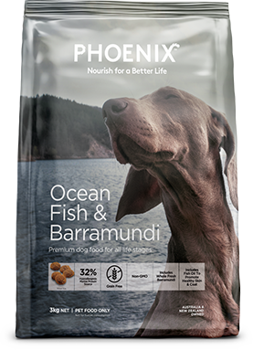 Ocean Fish & Barramundi